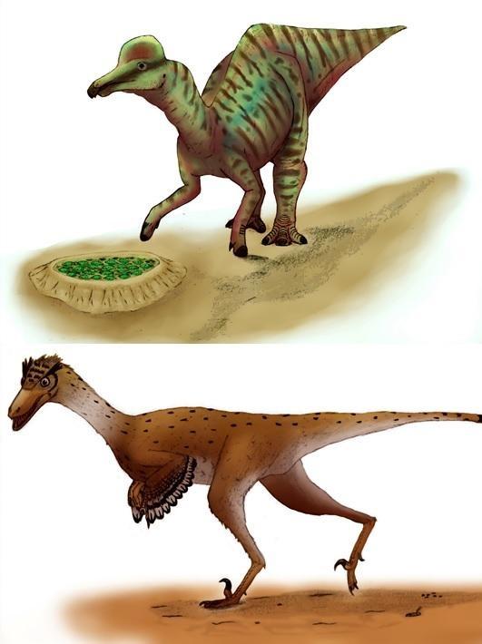 Scientists crack the secrets of dinosaur eggshells