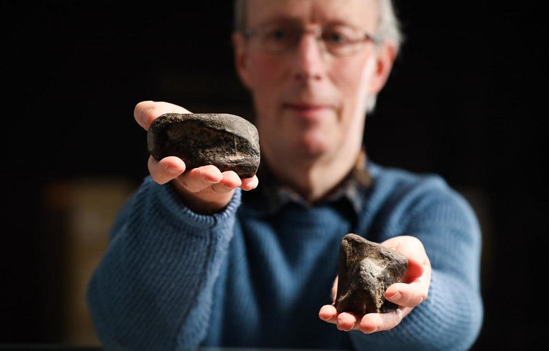 Scientists discover first dinosaur remains from Ireland